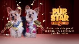 Pup star : a 2 c'est mieux du 02/01
