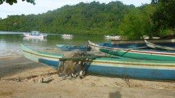 Les moluques, îles aux épices en streaming