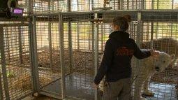 Une saison au zoo du 05/05
