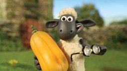 Shaun le mouton en streaming
