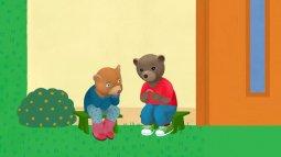 Petit ours brun du 22/03