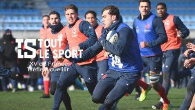 XV de France : Trèfle à cueillir