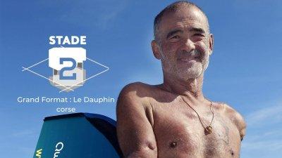 Grand Format : Le Dauphin corse