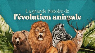 La Grande Histoire De L'évolution Animale  Cc85933b-phpg67lpt
