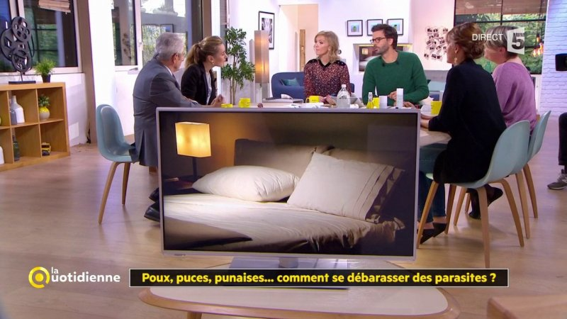 poux puces punaises comment se d barrasser des parasites france 5 07 11 2017. Black Bedroom Furniture Sets. Home Design Ideas
