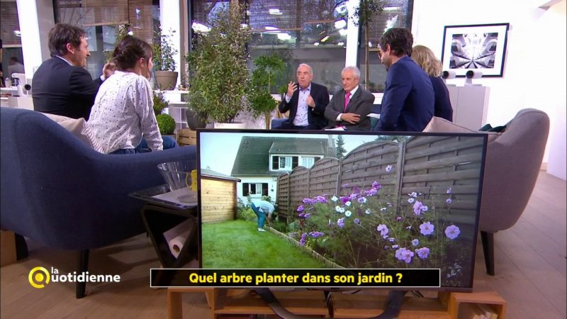 quel arbre planter dans son jardin france 5 15 12 2017. Black Bedroom Furniture Sets. Home Design Ideas