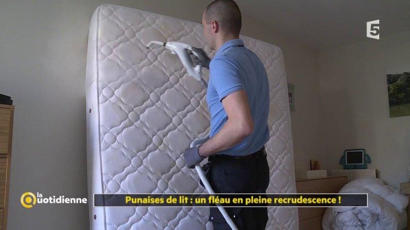 punaises de lit un fl au en pleine recrudescence france 5 07 11 2017. Black Bedroom Furniture Sets. Home Design Ideas