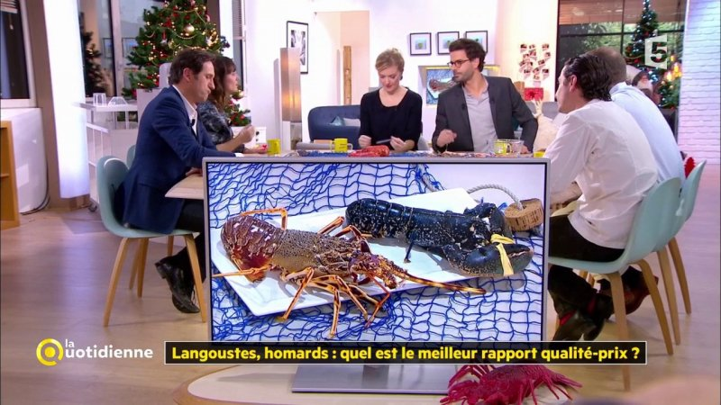 langoustes homards quel est le meilleur rapport qualit prix france 5 21 12 2017. Black Bedroom Furniture Sets. Home Design Ideas