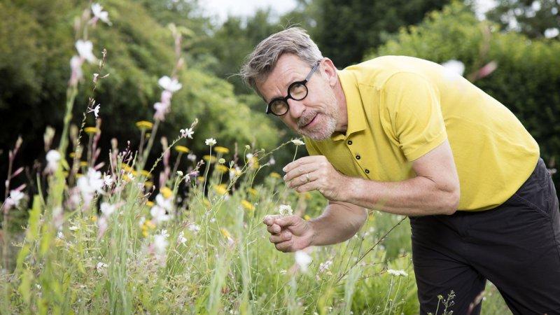 Replay comme une envie de jardins comme une envie de for 6 jardin guillaume bouzignac