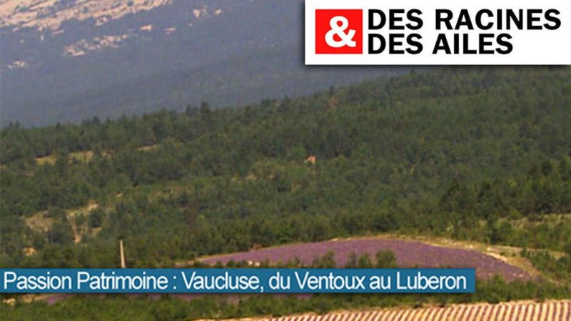 france 3 vaucluse replay