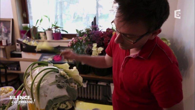 replay silence a pousse silence a pousse portrait le fleuriste belge du france 5. Black Bedroom Furniture Sets. Home Design Ideas