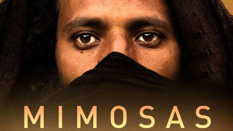 Mimosas la voie de l 39 atlas en streaming et vod tous les for Film marocain chambre 13 en streaming