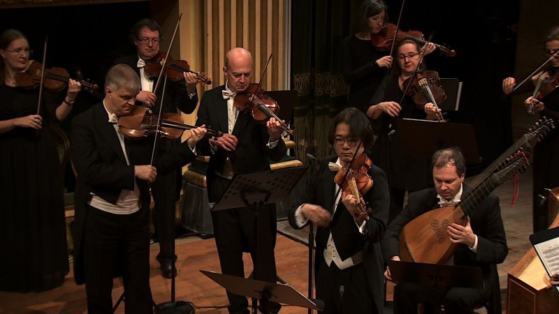 Vivaldi Les Quatre Saisons Avec Le Concerto Koln En Streaming Et